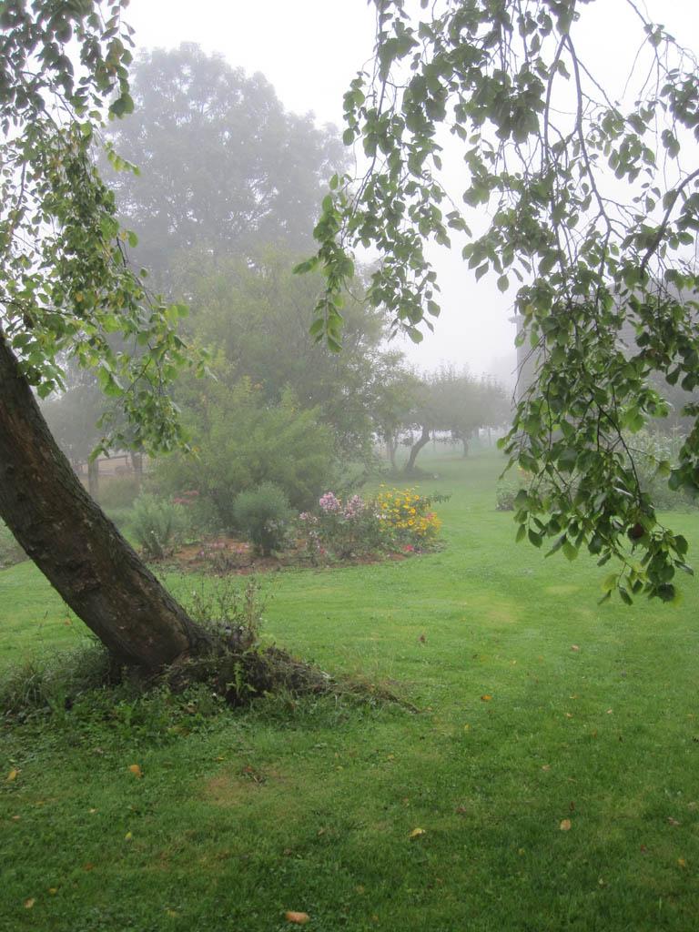 Rasen pflege d ngung mein garten ratgeber for Garten rasen