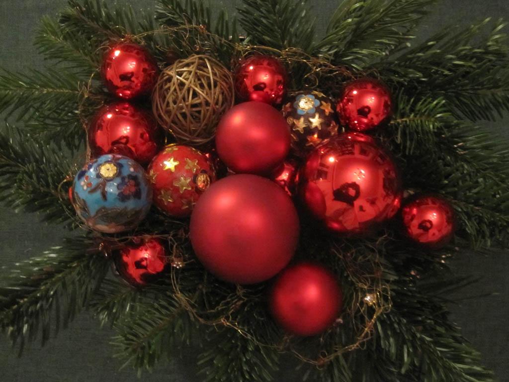 Weihnachtsbaum den richtigen finden mein garten ratgeber for Weihnachtsbaum arten